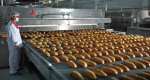 انواع دستگاه پخت نان
